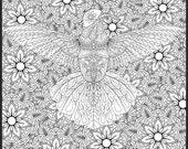 Hummingbird Detailed Colo...