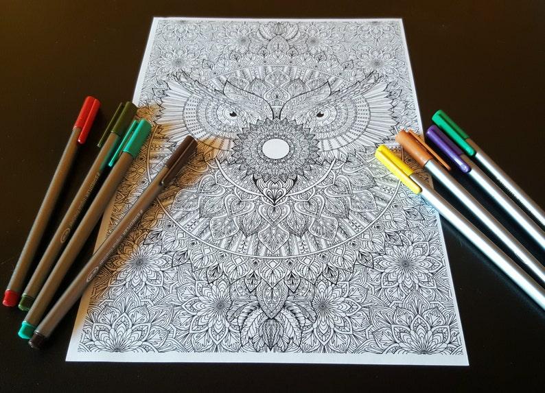Owl Mandala Detailed Colouring Page image 0