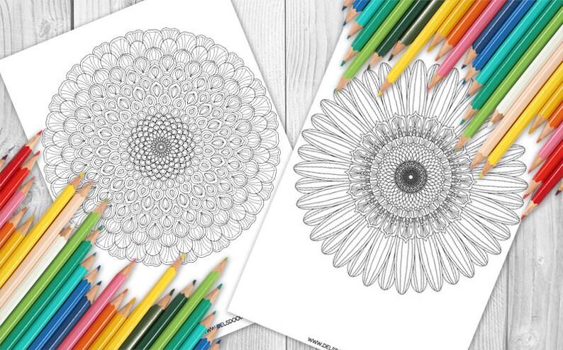 Dahlia and Ganazia Flower Mandalas  Two-Page Digital image 0