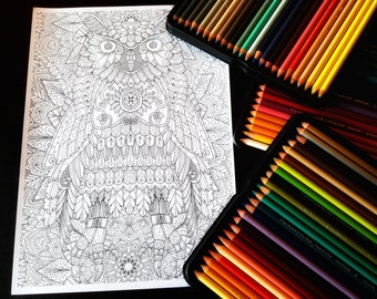 Owl 2 Detailed Colouring Page