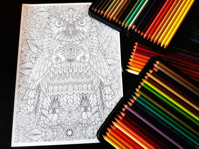 Owl 2 Detailed Colouring Page image 0
