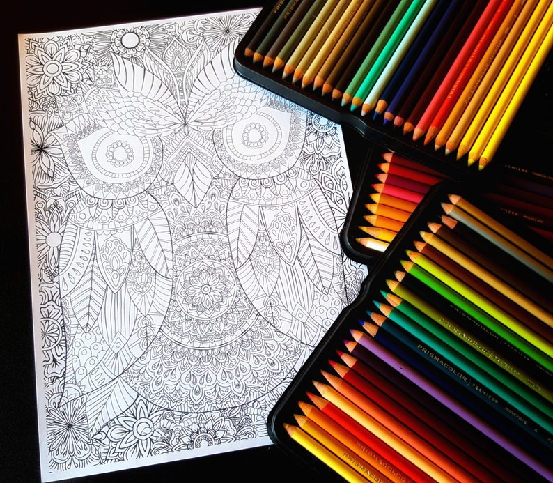 Owl Detailed Colouring Page image 0
