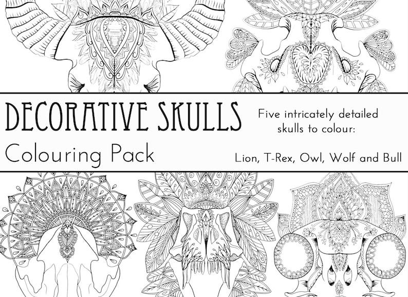 Decorative Skulls Colouring Pack image 0