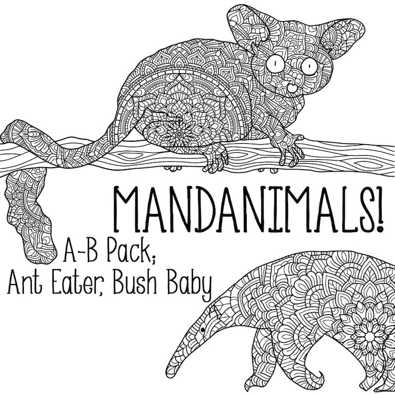 Mandanimals Colouring Pages  Ant Eater Bush Baby image 0