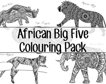 The African Big Five Colouring Pack