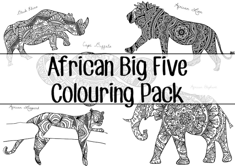 The African Big Five Colouring Pack image 0