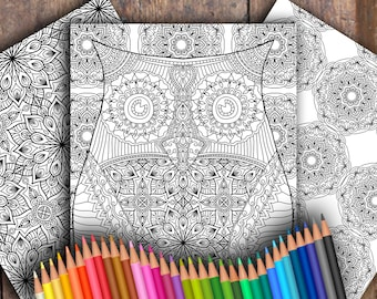 Owl Three-Page Digital Colouring Pack