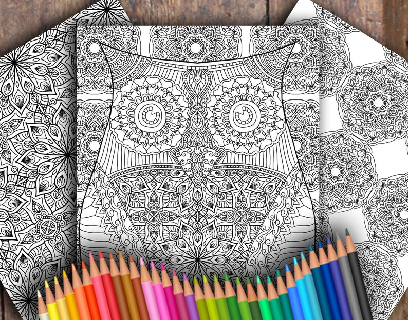 Owl Three-Page Digital Colouring Pack image 0