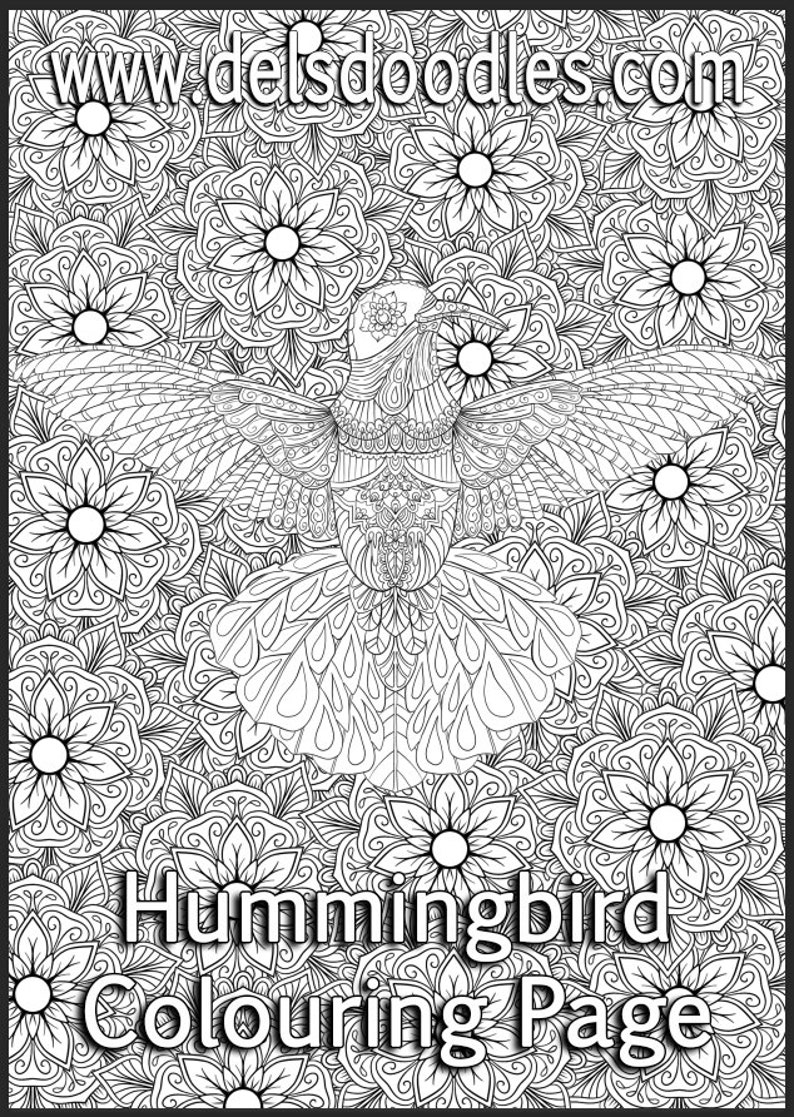 Hummingbird Detailed Colouring Page image 0