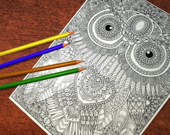 Owl 3 Detailed Colouring Page