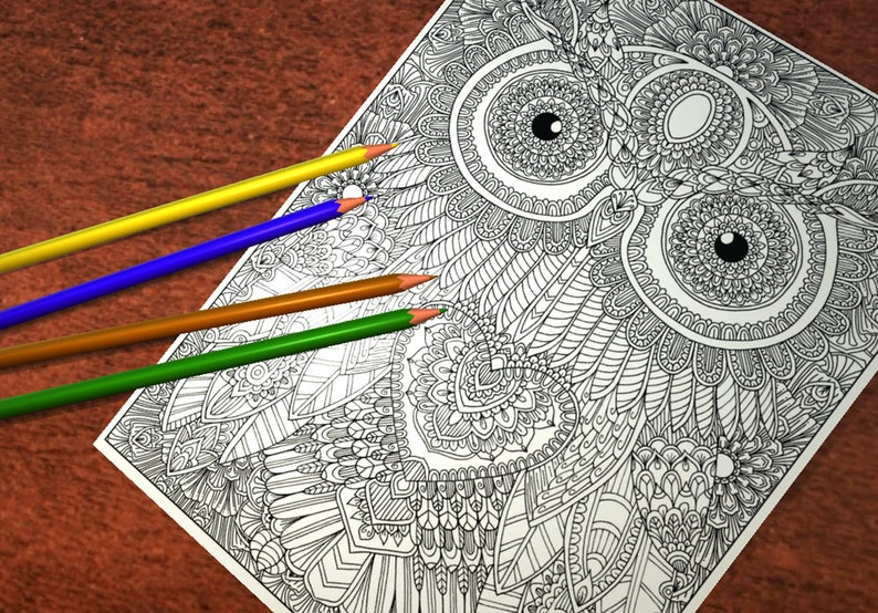 Owl 3 Detailed Colouring Page image 0