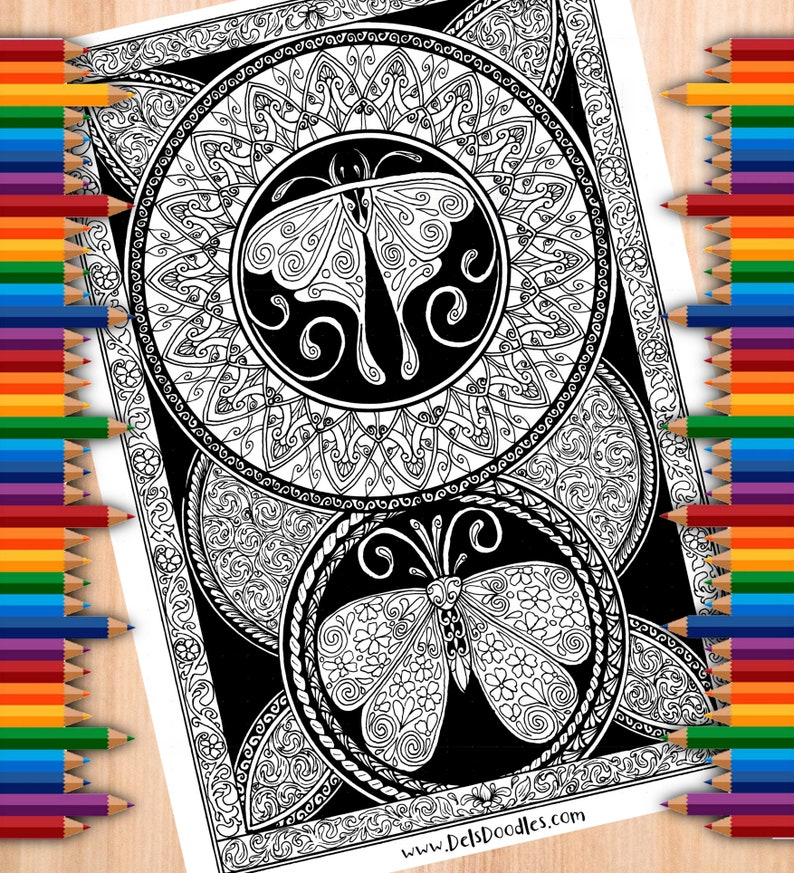 Floral Moth Pair Colouring Page image 0