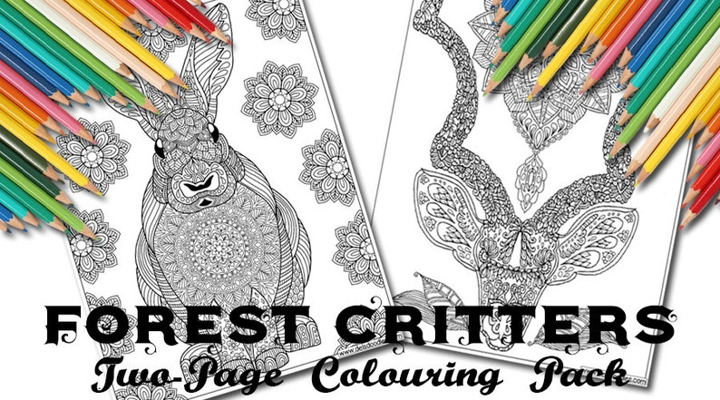 Forest Critters Two-Page Digital Colouring Pack image 0