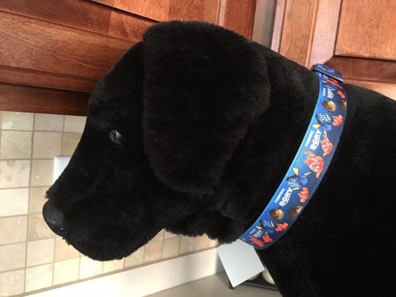 Finding Dory 1 Large and Medium Dog Collar and Optional  acbc831cc