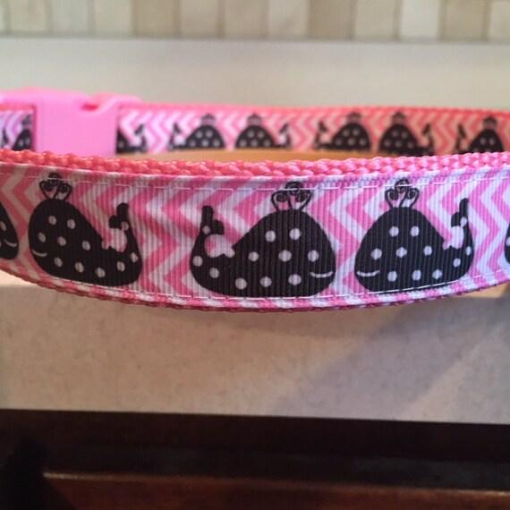 Polka Whales Beach 1 Large and Medium dog collar with  3cb0aca39