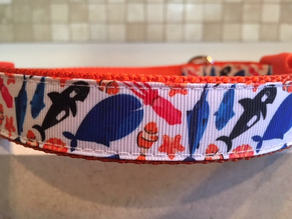 I Squid You Not Large and Medium dog collar with optional  3d41afa3c