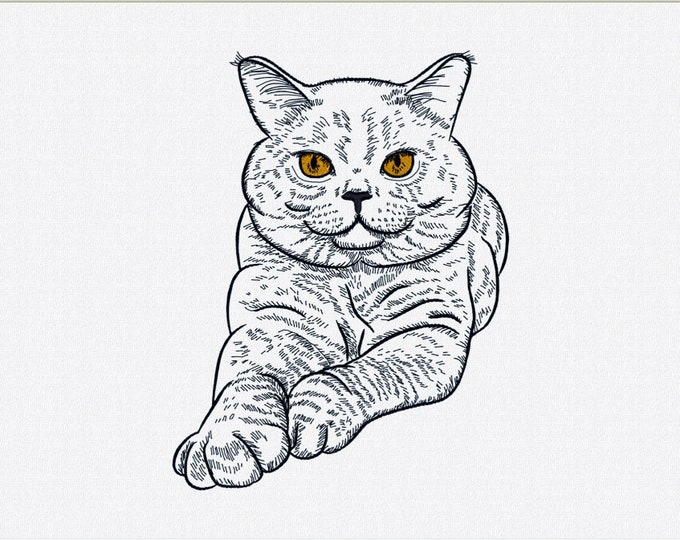 Appliqué Cat Embroidery design for machine embroidery. Available in PES, JEF, DST and more formats.