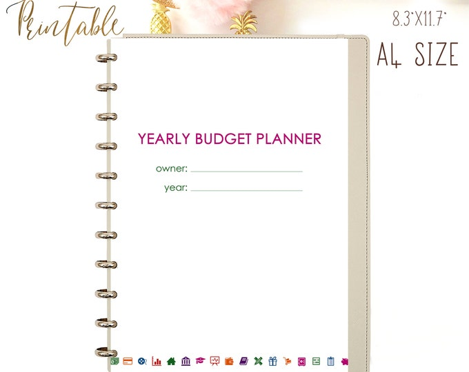 Budget Printable Planner A4 Monthly Budget Binder Financial Planner Inserts Expenses Tracker Printable Debt Snowball PDF Instant Download