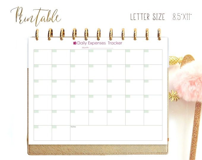Budget Planner Printable, Bills Organizer fits Big happy Planner Inserts, Daily Expenses,
