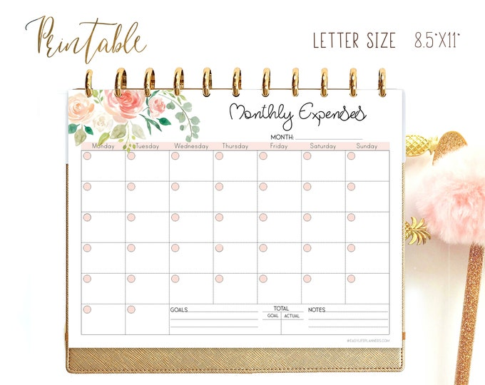 Expense Planner, Big Happy Planner Inserts, Financial Goals, Budget Planner Printable