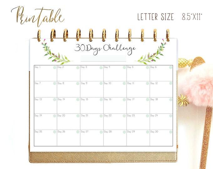 Habit tracker printable, Weight Loss Planner, made to fit Big Happy Planner Inserts.