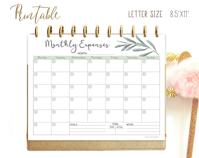 Expense Tracker, Monthly budget Planner Printable, Finance planner, for Big Happy Planner Inserts
