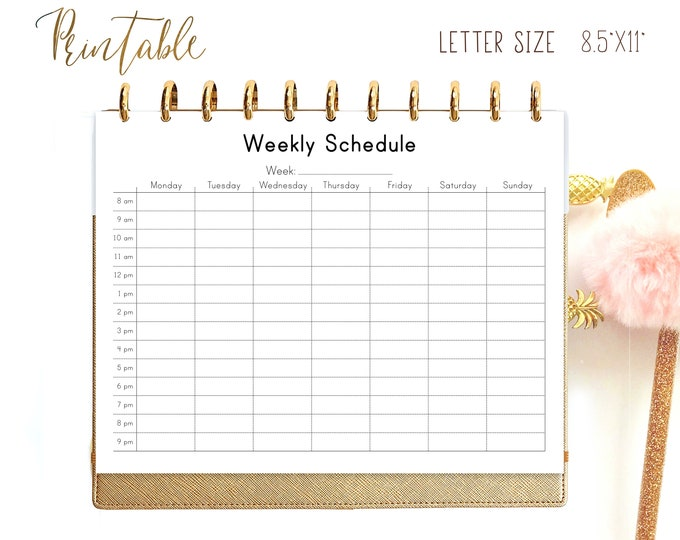 Weekly Schedule, Letter Size Planner, Weekly Hourly Planner, Big Happy Planner Inserts