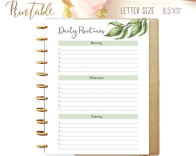 Cleaning Checklist, Letter Size Planner, Big Happy Planner Inserts, Printable Household binder