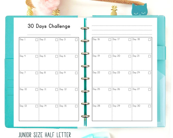 Weight Loss Tracker, Habit Tracker Printable, Habit Log Tracker, Discbound printables