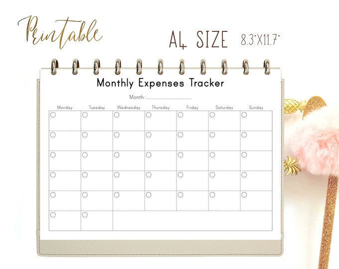 Bills Tracker, Expenses Tracker, Bill Organizer Printable Inserts