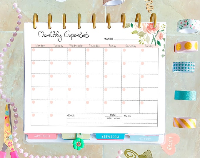 Budget planner Printable made to fit Classic Happy Planner Inserts, Financial Goals,