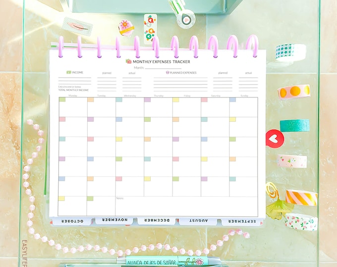 Monthly Expenses Tracker Budget Planner Printable, made to fit Big Happy Planner Inserts