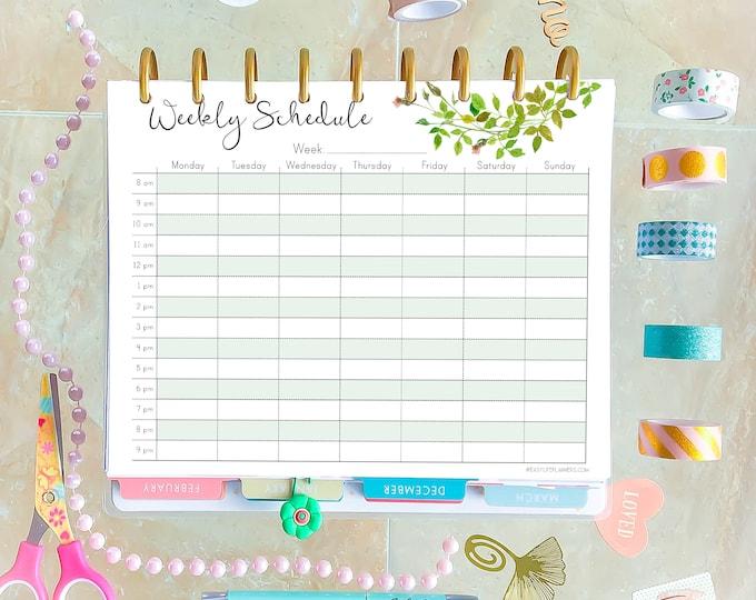 Weekly Schedule, Weekly Hourly Planner, Weekly Agenda for Happy Planner Printable Insert.