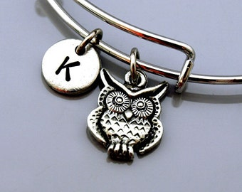 Dainty Owl Bracelet Charm Bangle Cute Owl Gift for Women Bird Lover Gift for Bird Watcher Silver Tone Owl Jewelry Owl Bangle Frosted Willow