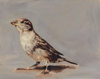 Brown Bird Print