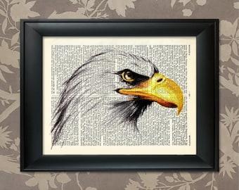 American Bald Eagle, Bald Eagle Poster, Bald Eagle Print, Bald Eagle art, Eagle art, Wildlife decor, Wildlife Art, Wildlife Print, Bird Art
