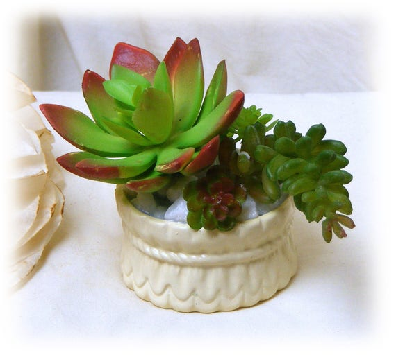 "Circular Ceramic Planter turned ""Tiny Treasure"""