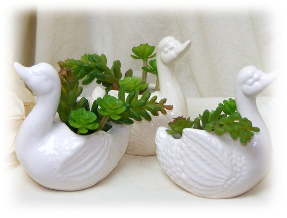 "ADORABLE (3) SWAN PLANTERS . . ""Tiny Treasures"" . . with Faux Succulents"
