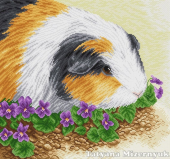 Cross Stitch Pattern Guinea Pig Etsy