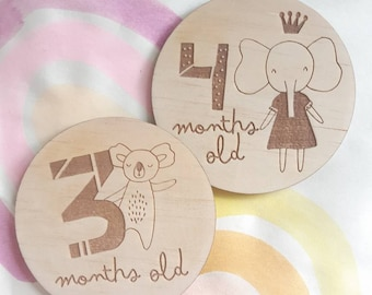 Baby Milestone Cards - Age Photo Props - Little Princess