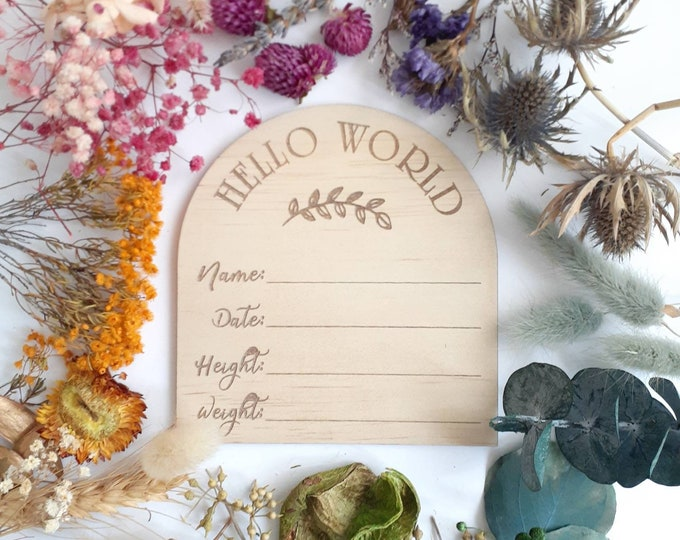 Hello World Birth announcement photo prop. Wood birth details disc