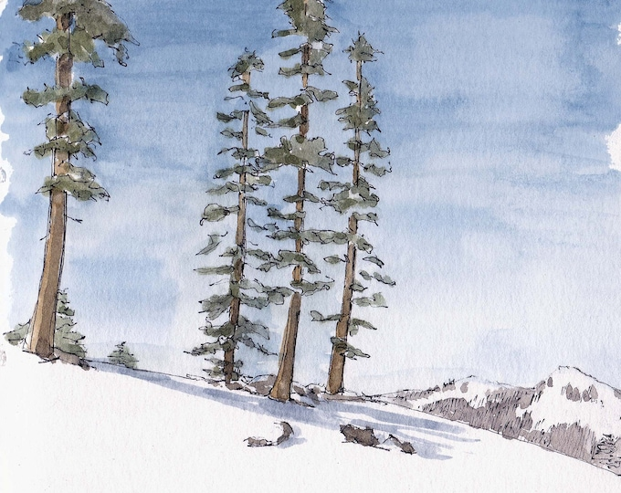 SNOWY TREES at Squaw Valley in Lake Tahoe - Ink and Watercolor, Drawing, Painting, Art Print, Sketchbook, Skiing, Snowboarding, Drawn There