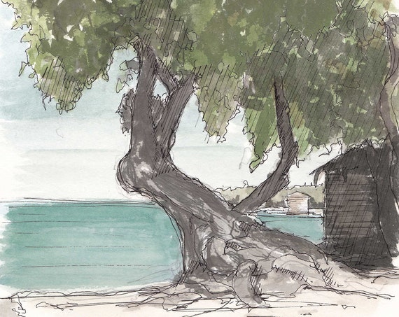 TROPICAL BEACH + TREE - Island Life, Ocean, Jamaica, Tropical, Shade Tree, Ink and Watercolor, Drawing, Painting, Sketchbook, Drawn There