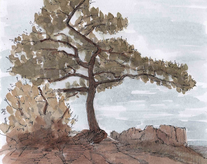 LOST MINE TRAIL in Big Bend National Park, Texas - Tree, Hiking, Mountains, Landscape, Drawing, Painting, Watercolor, Painting, Drawn There