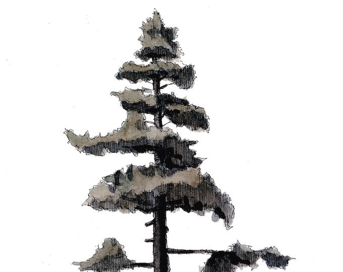 PINE TREE & ROCKS - Big Bear Lake, California, Sketch, Nature, Plein Air, Drawing, Watercolor, Painting, Sketchbook, Art, Print, Drawn There