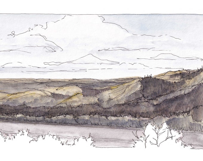 SANTA CRUZ MOUNTAINS - Windy Hill Open Space Preserve, California, Plein Air Landscape Watercolor Painting, Giclee Art Print, Drawn There
