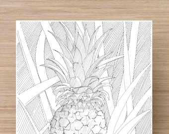 Ink Drawing of pineapple growing in Naples, Florida - Food, Fruit, Still life, garden, Sketch, 5x7 Print, Art, Illustration, Pen and Ink