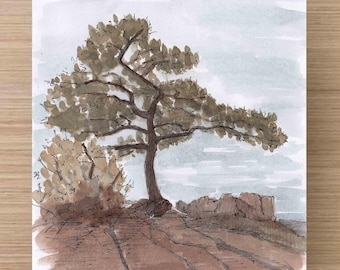Tree on the Lost Mine Trail in Big Bend National Park - Butte, Texas, Hike, Ink Drawing, Sketch, Watercolor, Art, Pen and Ink, 5x7, 8x10