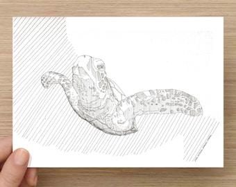 Ink Drawing of Sea Turtle - Sketch, Art, Pen and Ink, 5x7, 8x10, Print, Ocean, Swim, Nature, Leatherback