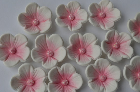 12 edible white and pink blossom flowers edible sugar flower etsy image 0 mightylinksfo